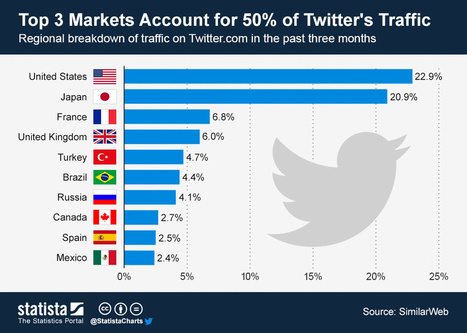 Everything You Wanted to Know About Twitter Marketing   digital marketing strategy   Scoop.it