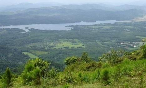 FAO: Medio ruralybosques requierenmayor mantenimiento para aportar agua a la población | Agua | Scoop.it