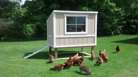 Build the Chicken House Like It Is Your Very Own | Living On Mother Earth: Permaculture, Organic Gardening & Farming, Homesteading, Tools & Implements | Scoop.it
