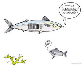 Les Lyonnais créent leur monnaie !: Pourquoi une monnaie locale et complémentaire ?   DD   Scoop.it