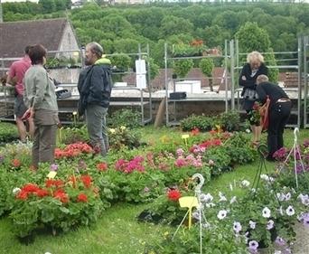 Vie locale Recey-sur-Ource : les plantes aromatiques à l'honneur ce ... - Bien Public | Atelier Jardin de la Gimbrère | Scoop.it