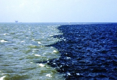 Ocean dead zone near African coast shows lowest oxygen levels ever recorded | Biodiversity protection | Scoop.it