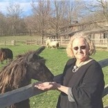 SALE OF LLAMA DROPPINGS HELPS CITIZENS LIBRARY IN WASHINGTON, PENNSYLVANIA | Pedegru | Animals Make Life Better | Scoop.it