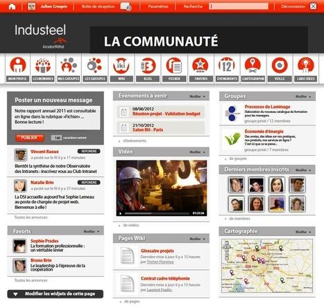 François Badénès : « Beaucoup de grandes entreprises font du Social Washing » | Collaboratif-Info | Réseaux Sociaux d'Entreprise et Travail Collaboratif | Scoop.it