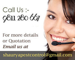 Pest Control services in Delhi | Pest Control | Scoop.it