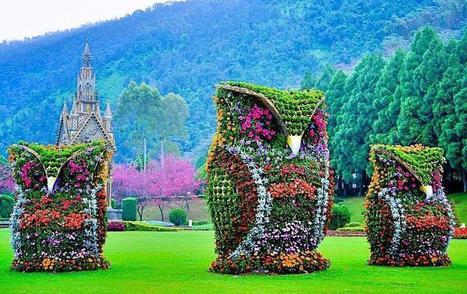 Twitter / Globe_Pics: Impressive flower owl sculptures ... | 3D Art | Scoop.it