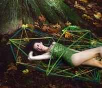 ENVIRONMENT: This Season's Hottest Trend: Fashion Protecting Forests | Fashion Trend and Style | Scoop.it