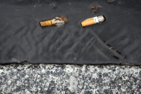 France: First Outdoor Public Smoking Ban in Paris Playgrounds | France News | Scoop.it