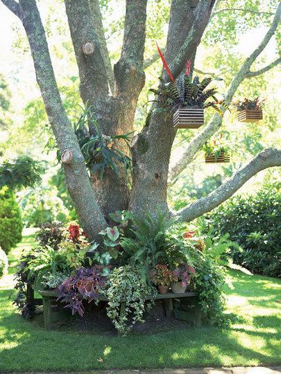 Nhà vườn phong cảnh đẹp | Tạo dựng không gian đẹp | Scoop.it