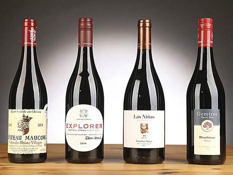 Les vins bio prennent l'aile | Le Vin et + encore | Scoop.it