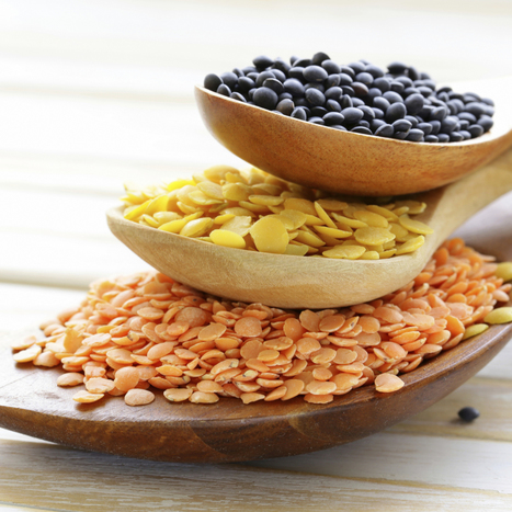 15 #Foods That Help You #Lose #Weight | Weight Loss News | Scoop.it