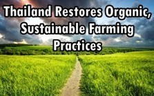 "Thailand Restores Organic, Sustainable Farming Practices (""my kind of military rule; move Big-Ag"") 