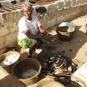 Au Sénégal, la ruée des Russes et des Asiatiques sur la pêche artisanale | ECONOMIES LOCALES VIVANTES | Scoop.it