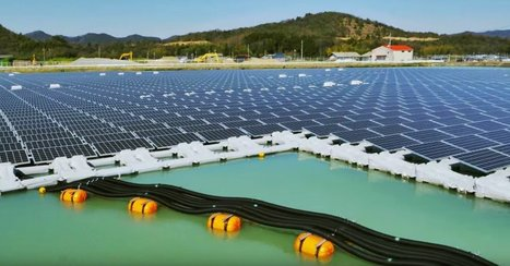 These bizarre floating solar panels are solving 3 critical problems | Strange days indeed... | Scoop.it