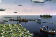 Algen schlucken Kohlendioxid und liefern Sprit | öko | Scoop.it