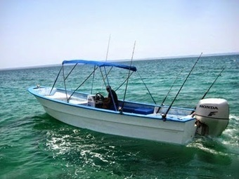 Cabo San Lucas Sportfishing Charters: ENJOY YOUR VACATIONS WITH FISHING IN THE WATER BODY | Cabo San Lucas Fishing Charters | Scoop.it