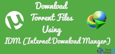 Download Torrent With IDM (Torrent To IDM 2016) | Anshul Mathur | Scoop.it