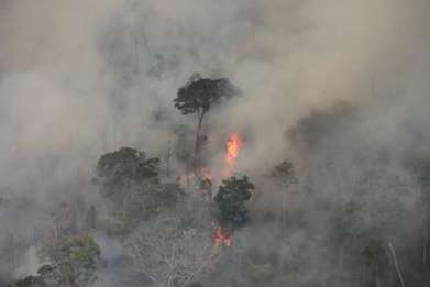 Brazil: Amazon fires threaten to wipe out uncontacted Indians | GarryRogers Biosphere News | Scoop.it