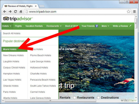 Review Alert! – Most Interesting TripAdvisor-Reviews Based Posts | Social Media Marketing Company India | Scoop.it