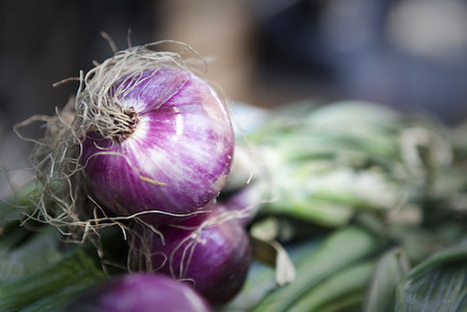 Mighty Onions | NYBG | Vegetable Gardening Resources | Scoop.it