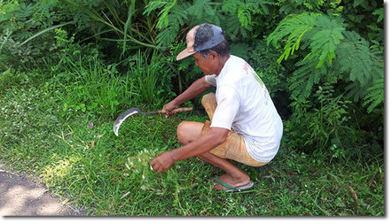 Using Hand Tools | Think Like a Permaculturist | Scoop.it