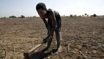 Moins de 4% des gaz à effet de serre pour l'Afrique qui souffre ... | Agribusiness | Scoop.it