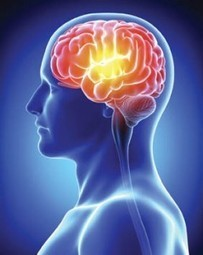 Preserving brain health - Irish Medical Times | mTBI | Scoop.it