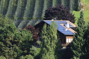 Installation de panneaux solaires : prenez garde aux arbres ! | Conseil construction de maison | Scoop.it