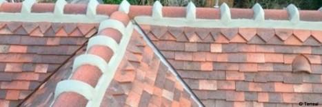 Terreal développe sa gamme de tuiles aux styles anciens | Conseil construction de maison | Scoop.it