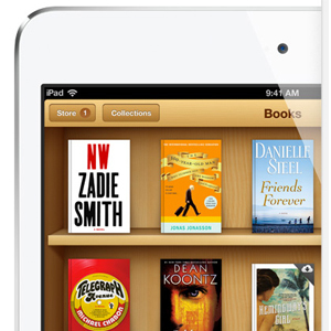 A Beginner's Guide To Setting Up An eBook Library On Your iPad | iPads in the Elementary Library | Scoop.it