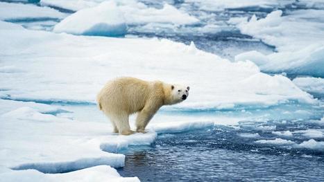 Critiquing climate coverage | Cliographic | Scoop.it
