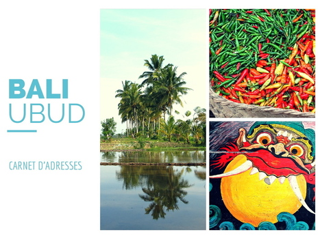 Ubud: carnet de voyage Bali, meilleurs restaurants, adresses activités   Voyage   Scoop.it