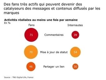 Fans Facebook, quelle valeur pour les marques ? | TNS Sofres | Africa Marketing Research | Scoop.it