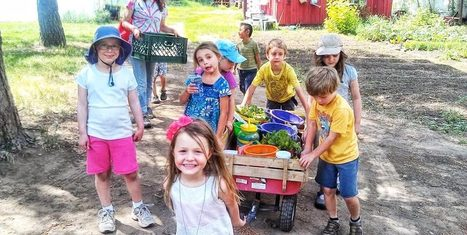 Cure Organic Farm: A Different Kind of Summer Camp - Organic Connections | Healthy Living | Scoop.it