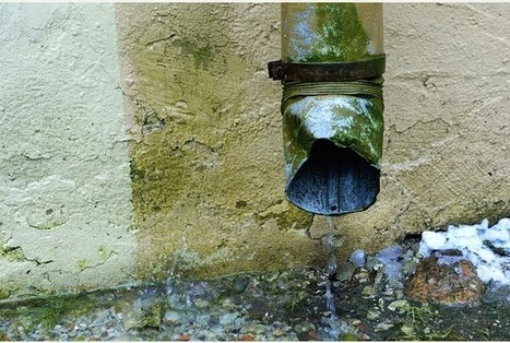 Top causes of rising damp in your home   Greenserve Property Maintenance   Scoop.it