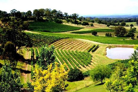 Wine Country Accommodation Deal | Boutique Tours | Scoop.it