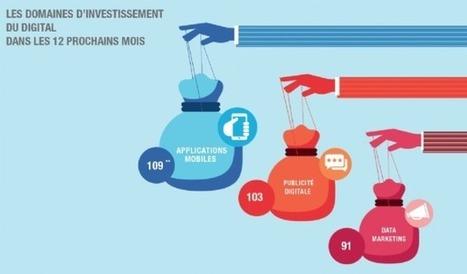 [Baromètre] Marketing digital : quelles sont les priorités en 2015 ? | Digital News in France | Scoop.it
