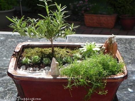 Miniature Japanese Zen Garden Design Photograph DIY Miniat