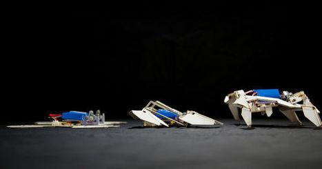 (Vidéo) Des robots en origami qui avancent tout seuls | Vous avez dit Innovation ? | Scoop.it