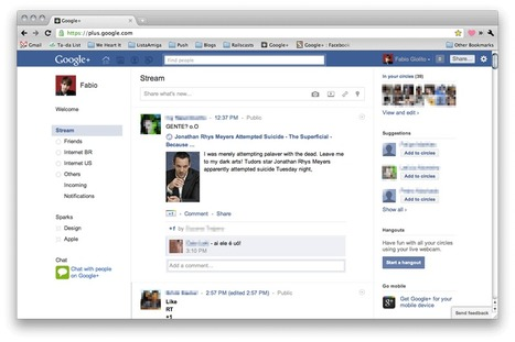 Google+ : Facebook - Themes and Skins for Google - userstyles.org | The Google+ Project | Scoop.it
