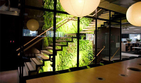 The Green Roof Industry in Australia Is Growing Up | City Camp - Architecture | Scoop.it