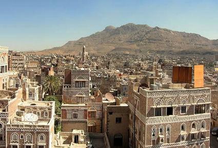Yemen No Longer Major Destination for Illegal Rhino Horn   Rhino poaching   Scoop.it
