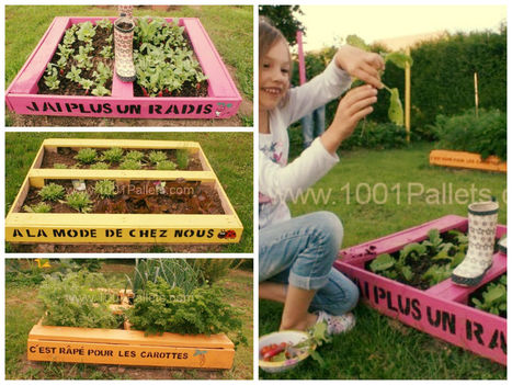 Pallet as a mini-planters / Mini potager en palettes | THE WORLD AROUND US ODD & INTERESTING STORIES | Scoop.it