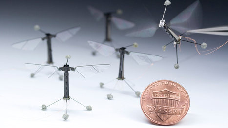 Don't Get Paranoid, But There Are Now Insect-Sized Flying Robots | digimap | Scoop.it