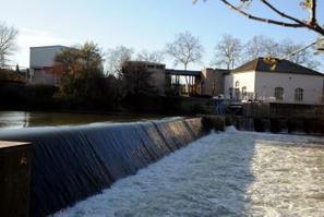 Carcassonne. Trop de pesticides dans le fleuve Aude | Autres Vérités | Scoop.it
