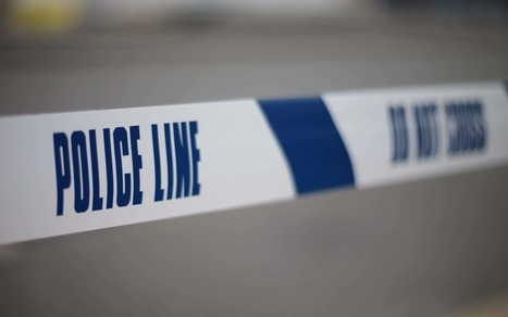 Suspect handbag snatcher dies after citizen's arrest | Policing news | Scoop.it