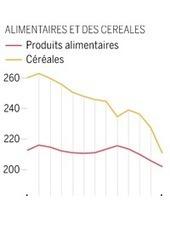 La baisse des prix alimentaires se poursuit   Projet de DA   Scoop.it