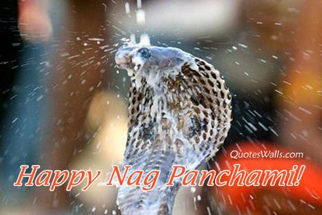 Nag Panchami SMS, Shayari Wishes | Dil Dosti Zindagi Fun | Scoop.it