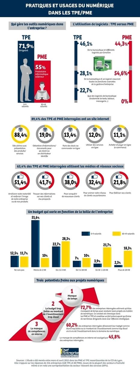 L'usage du numérique dans les TPE et PME (#Infographie) | Social and digital network | Scoop.it