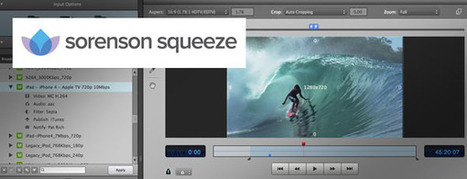 Videoguys Blog - New Sorenson Squeeze 8 Pro supports Apple ProRes, Avid DNxHD and Dolby Pro Audio | video encoding | Scoop.it